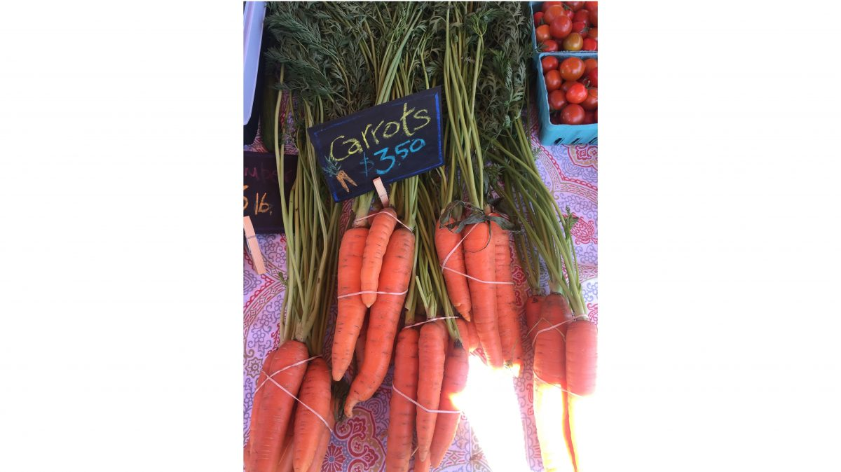 Escaping the Big City: Goshen Farmers' Market at Miranda Vineyard — Delicious & Sons